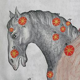 Himmelsspektakel Beitragsbild Astronomie und Poesie